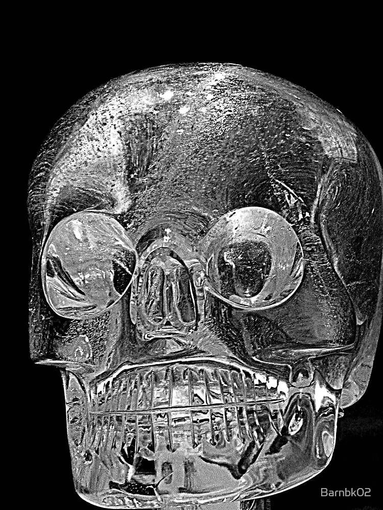 Rock Crystal Skull by Barnbk02