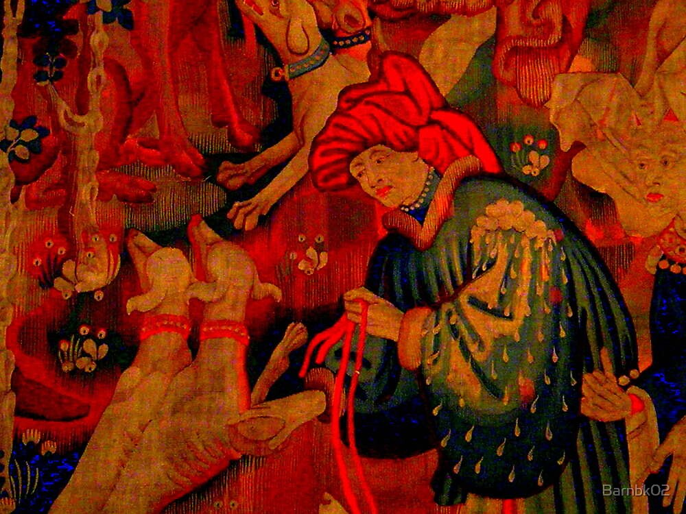 Tapestry by Barnbk02