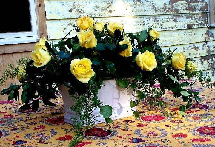 Yellow Rose of Hope by Paulissa  Kipp's Art of Becoming