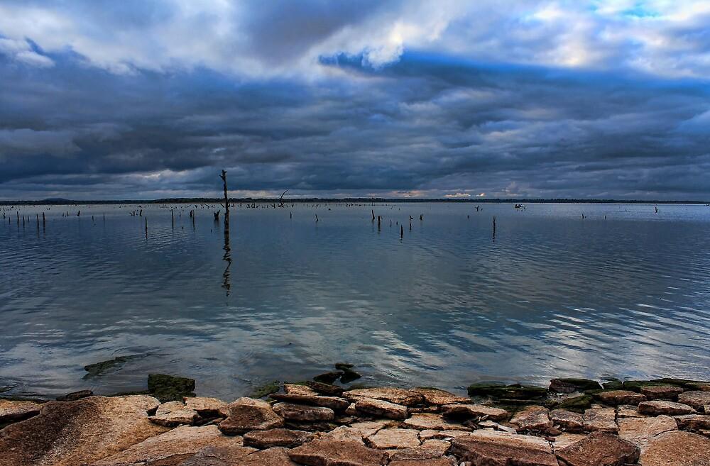A Blue View by Carolyn  Fletcher