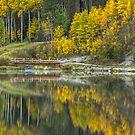 Fall Bridge by Justin Atkins