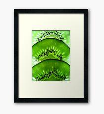 Macro Kiwi Fruit Framed Print