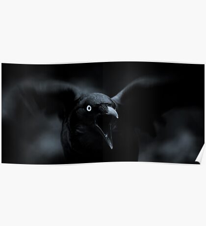 Hungry crow Poster