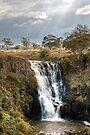 Lal Lal Falls by Christine Smith