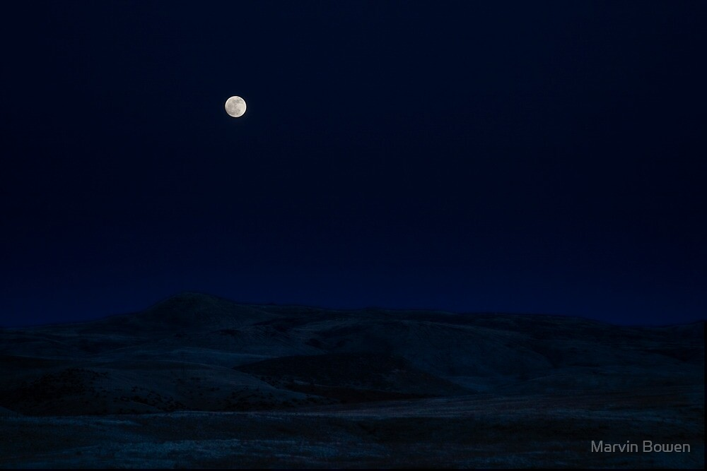 Moonscape by Marvin Bowen
