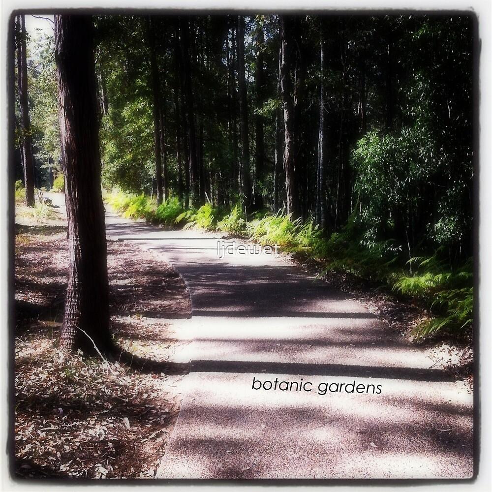 botanic gardens sunshine coast australia by ljdewet
