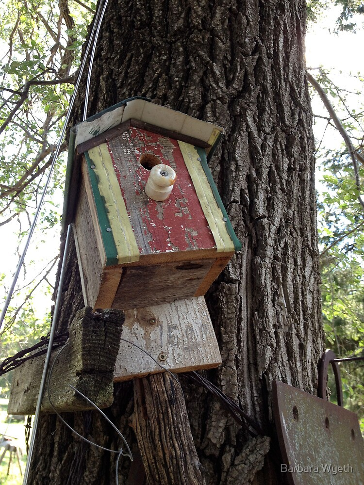 Bird House at Mr. Sparrow's by Barbara Wyeth
