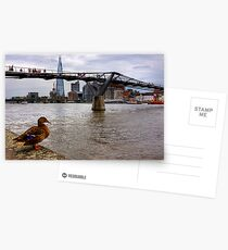 A duck's view of the London Thames, London Postcards