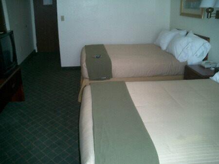 Holiday Inn Hotel Raymond James Stadium by hotelreservatio