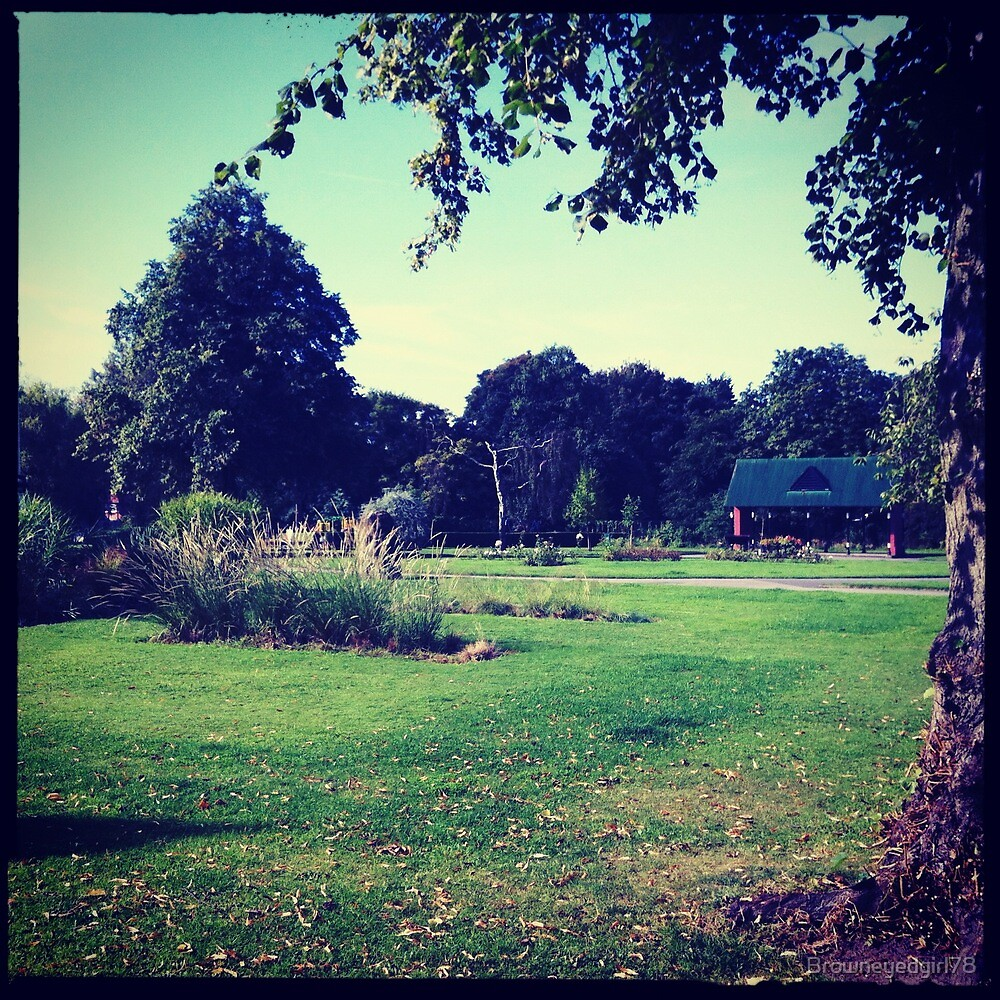 The Park - Cale Green, Stockport by Browneyedgirl78