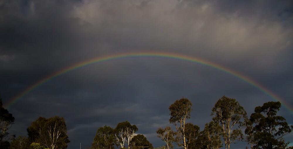 Rainbow by Johanne Platt