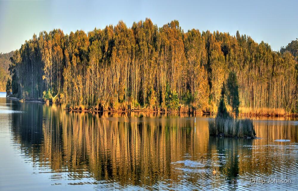 Let Us Reflect - Narrabeen Lakes, Sydney Australia by Philip Johnson