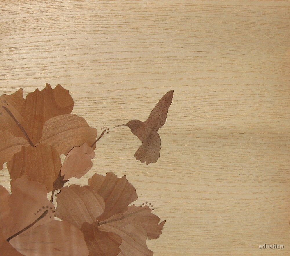 Hummingbird and hibiscus by adriatico