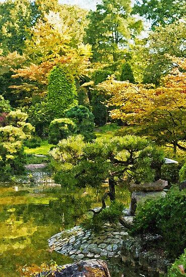 Japanese Garden by Vac1