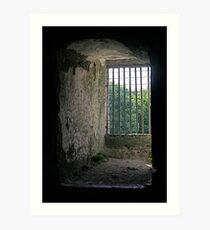 Window from inside Blarney Castle, County Cork, Ireland Art Print