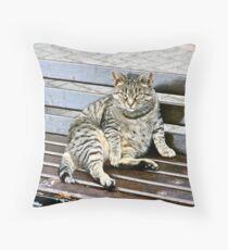 Irish Fat Cat, County Cork, Ireland Throw Pillow