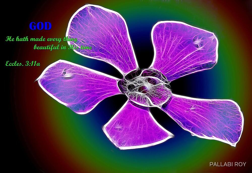 GOD'S MAGICAL CREATION by PALLABI ROY