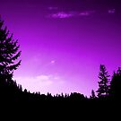 Purple Skies (available in ipad) by Jess Meacham