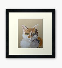 Bailey by Shannon Wright Framed Print