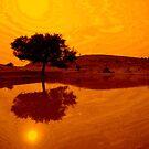 Desert Reflections by Valerie Rosen
