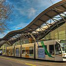TRAMS AND TRAINS by Lynden