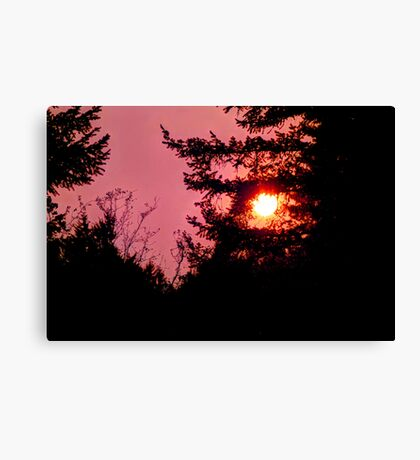 September Sun Canvas Print