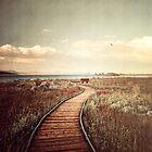 Mono Lake unplugged by Philippe Sainte-Laudy