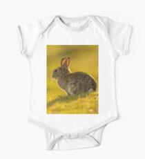 Cute Rabbit Wildlife Golden Hour One Piece - Short Sleeve