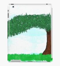 Landscape of calm iPad Case/Skin