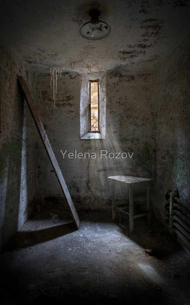 From Which There Is No Escape by Yelena Rozov