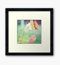 The Spaces Between Framed Print