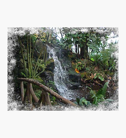 Footbridge and Waterfall at Ott's Garden Center - Schwenskville PA Photographic Print