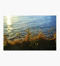 Seaside Flowers Photographic Print