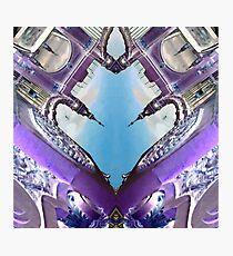 Swansong Photographic Print