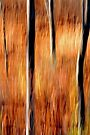 Autumn Abstract #2 by Laurie Minor