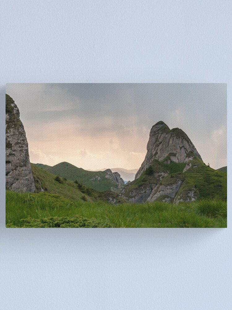 Alternate view of Raw Canvas Print