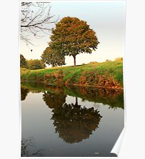 A Reflection in Nature Poster