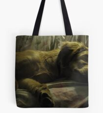 golden sleep Tote Bag