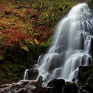 Fairy Falls I by Tula Top
