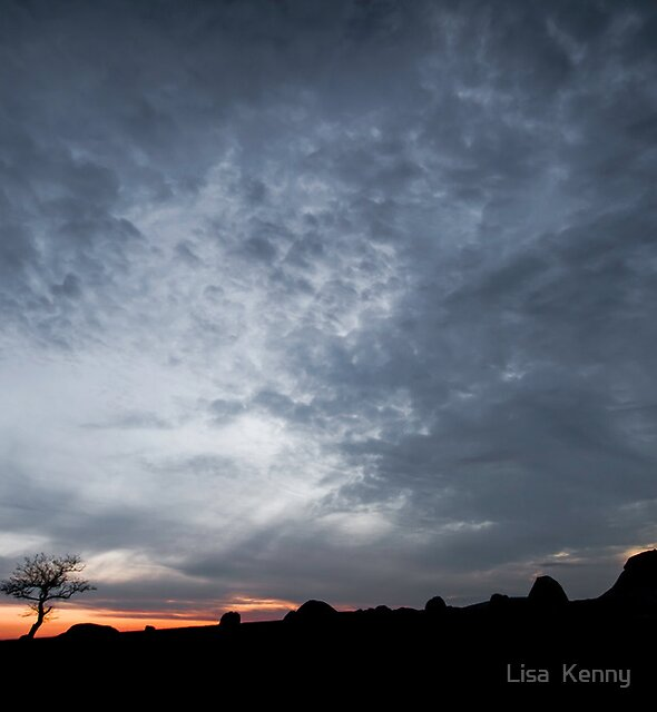 another night at Dog Rocks by Lisa Kenny