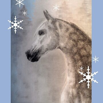 Grey Arabian Horse on Blue Snow Background by TwoFriends