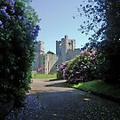 Warwick castle England, seen from floral grounds by Grace Johnson