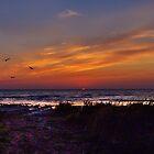 Sunset on Lake Huron by Yukondick