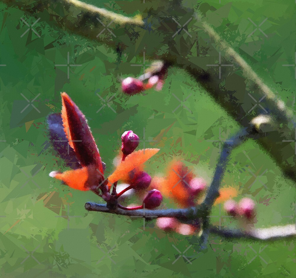 Spring by Vac1