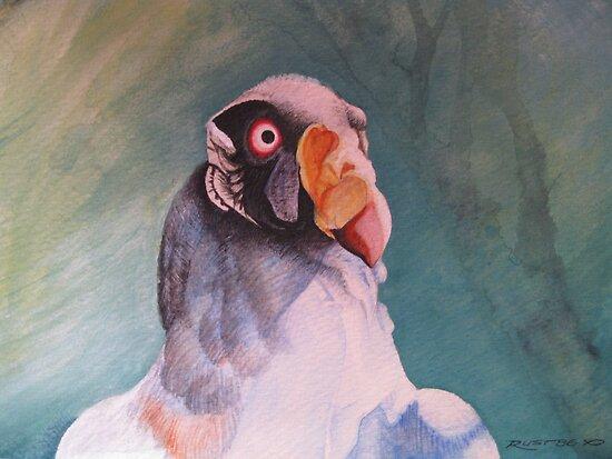 King Vulture by Treestone