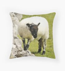 Yorkshire Lamb Throw Pillow