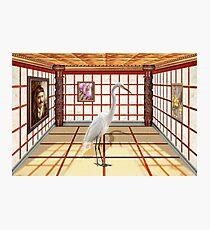 Animal - The Egret Photographic Print