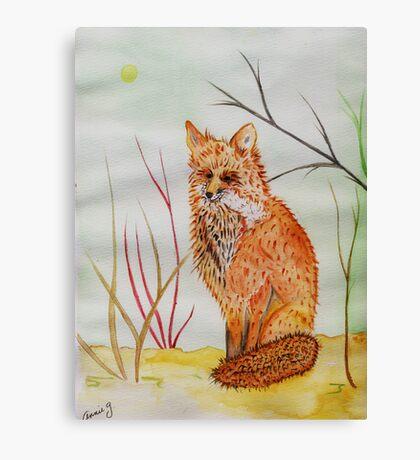 A Red Fox Canvas Print