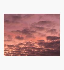 Mauve Photographic Print