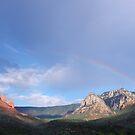 Rainbows and Thunderstorms~Arizona by Joni  Rae